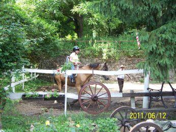 Felnőtt lovaglás tanítás